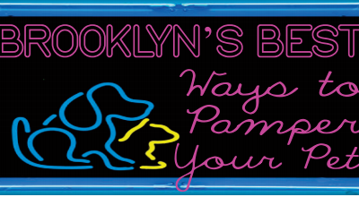 Brooklyn's Best Ways to Pamper Your Pet