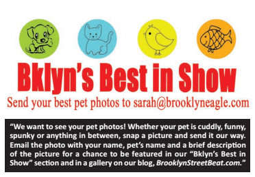 Brooklyn's Best in Show!