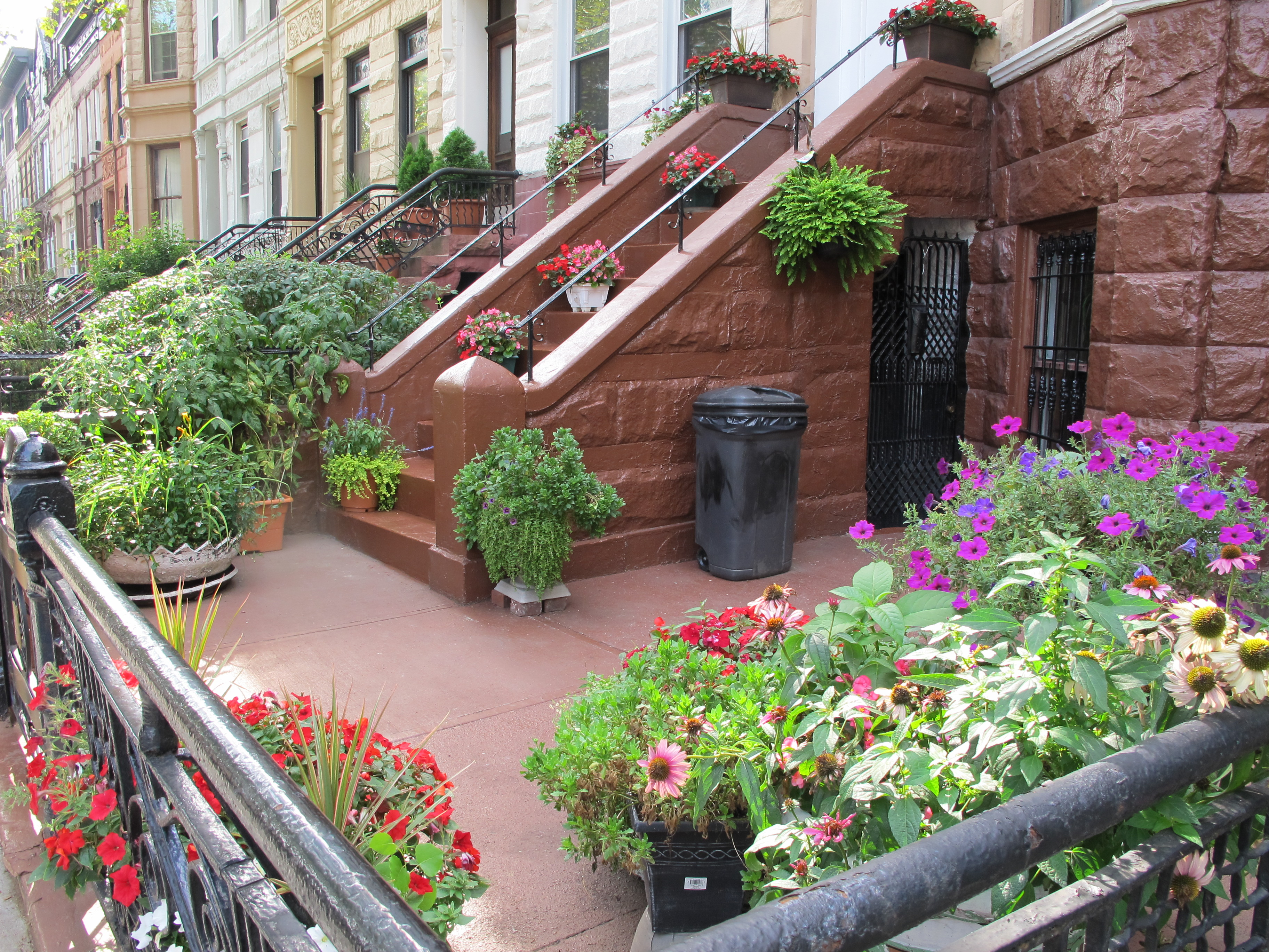 BBG Greenest Block in Brooklyn Winners