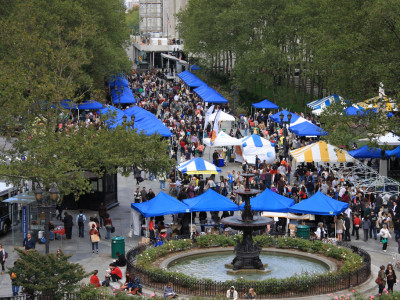 Downtown Brooklyn: The Brooklyn Book Festival 2014 Is Coming Next Month