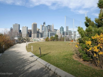 Brooklyn Bridge Park: Designing One of Brooklyn's Biggest Park Projects