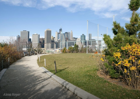 Designing Brooklyn Bridge Park