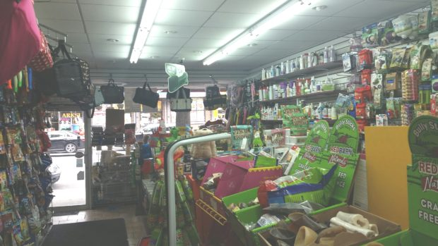 Your Animal Friends Come First at Pet Boutique and Supply